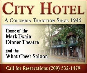 City Hotel Banner - IAB Medium Rectangle Banner Design